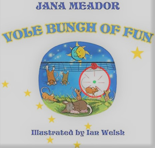 Jana Meador Vole Bunch of Fun