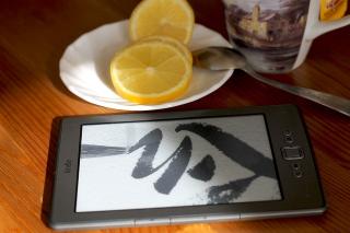 Kindle-266556_640
