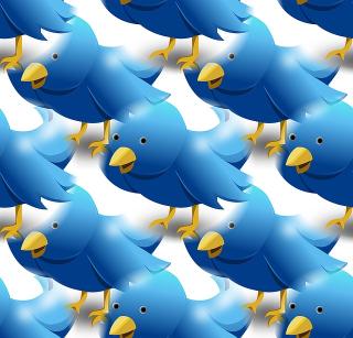 Twitter-1138522_640