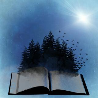 Book-718633_1920