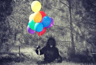 Gorilla-504638_1920